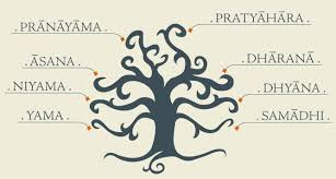 What are the eight limbs of yoga and their meanings? 10